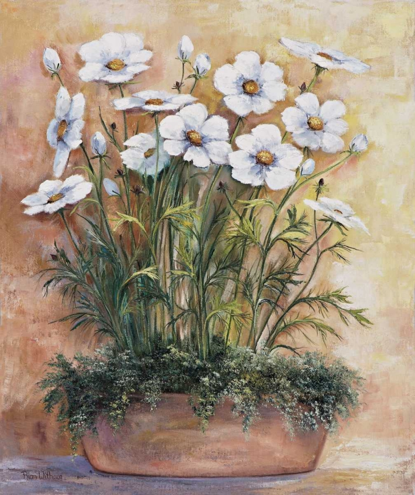 White anemones in bowl Withaar, Rian 58019