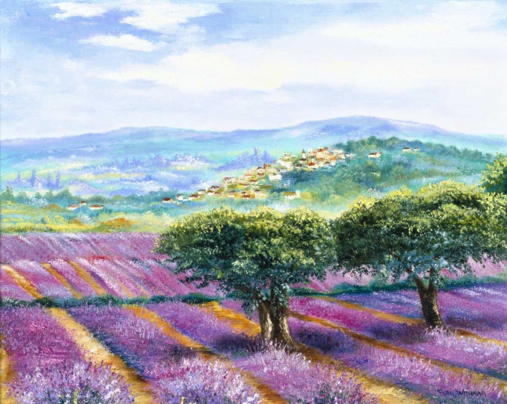 Lavender field Withaar, Rian 58038