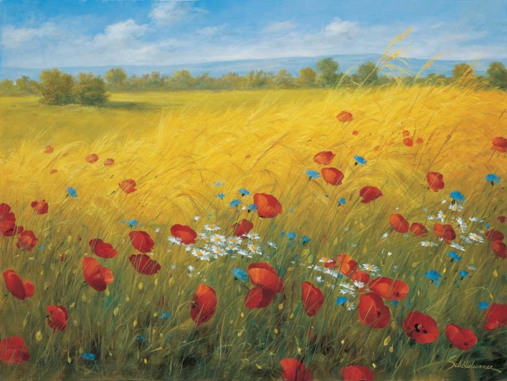 Sparkling field I Scholnhammer, Heinz 58060
