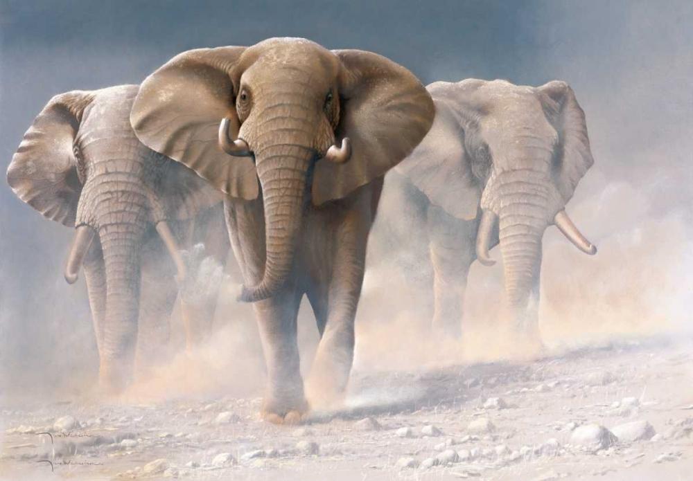 Running elephants I Weenink, Jan 58105