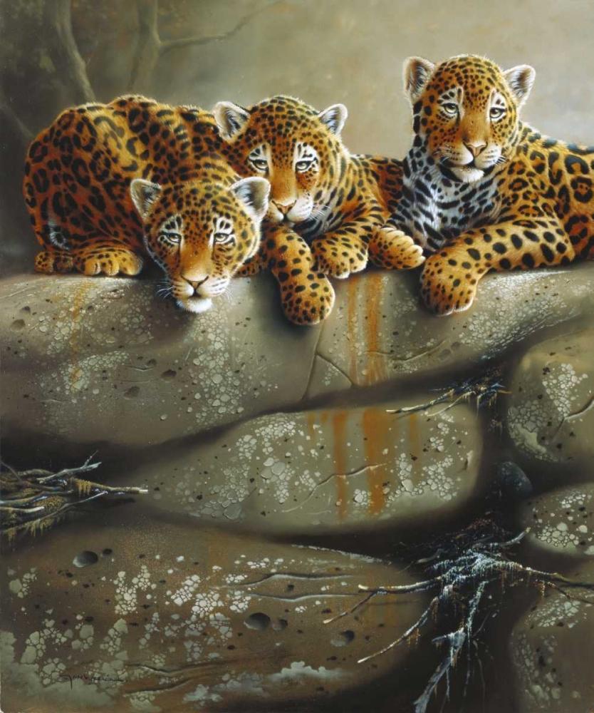 Three little tigers Weenink, Jan 58117