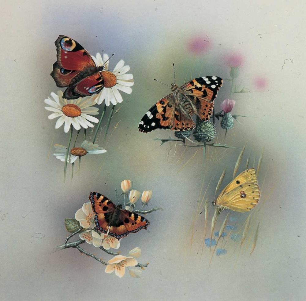 Butterfly composition Weenink, Jan 59083