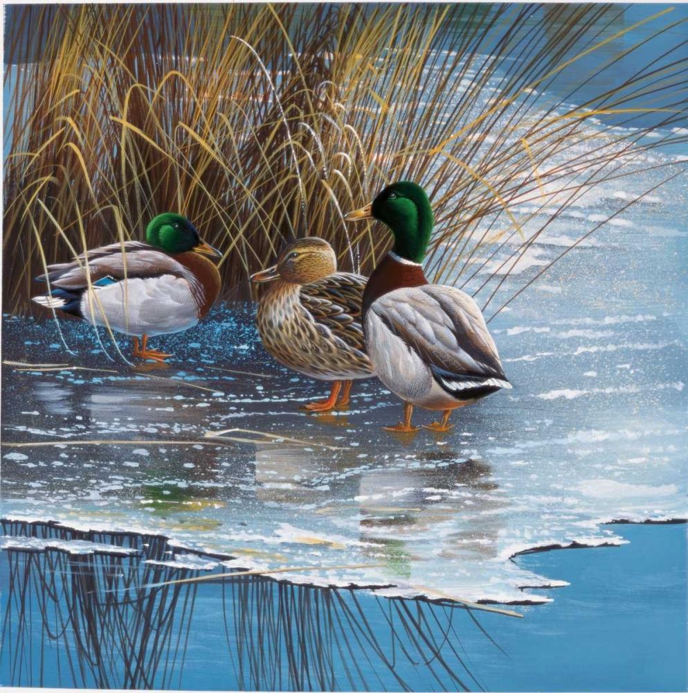 Three ducks on ice Weenink, Jan 58123