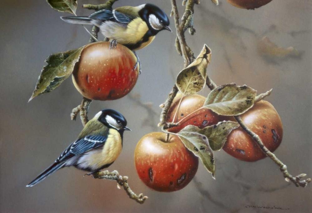 Two birds with apples Weenink, Jan 58133