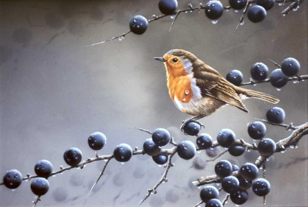 Bird sitting on vinetree Weenink, Jan 58134