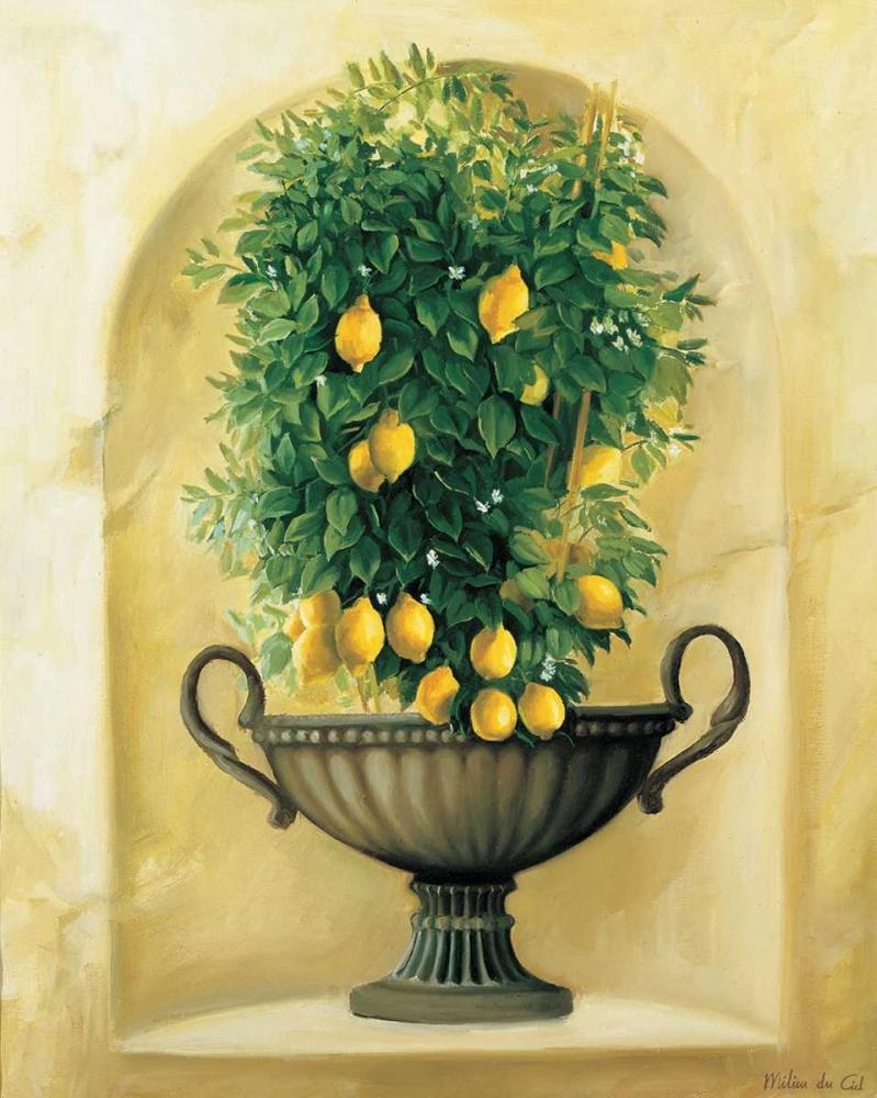 Citrons du Ciel, Milieu 58323