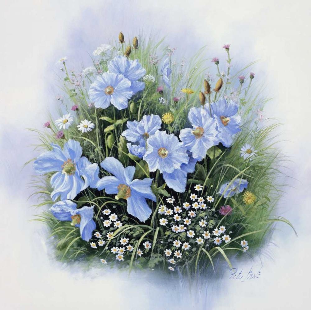 Blue flowers Motz, Peter 58512