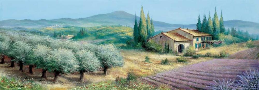 Provence II Withaar, Reint 58677