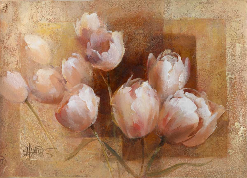 Willems tulips for you Haenraets, Willem 58941