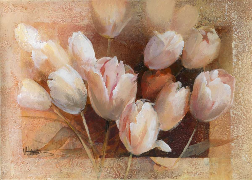 Theas tulips for you Haenraets, Willem 58942
