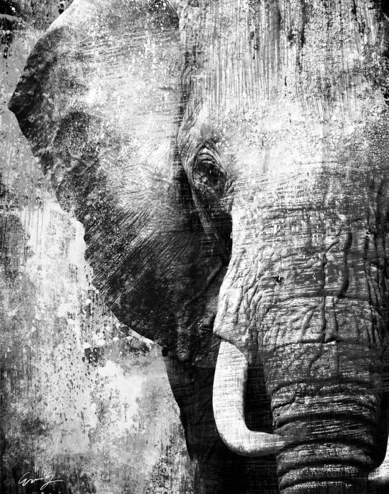 AFRICAN ANIMALS I - grey Yang, Eric 67092