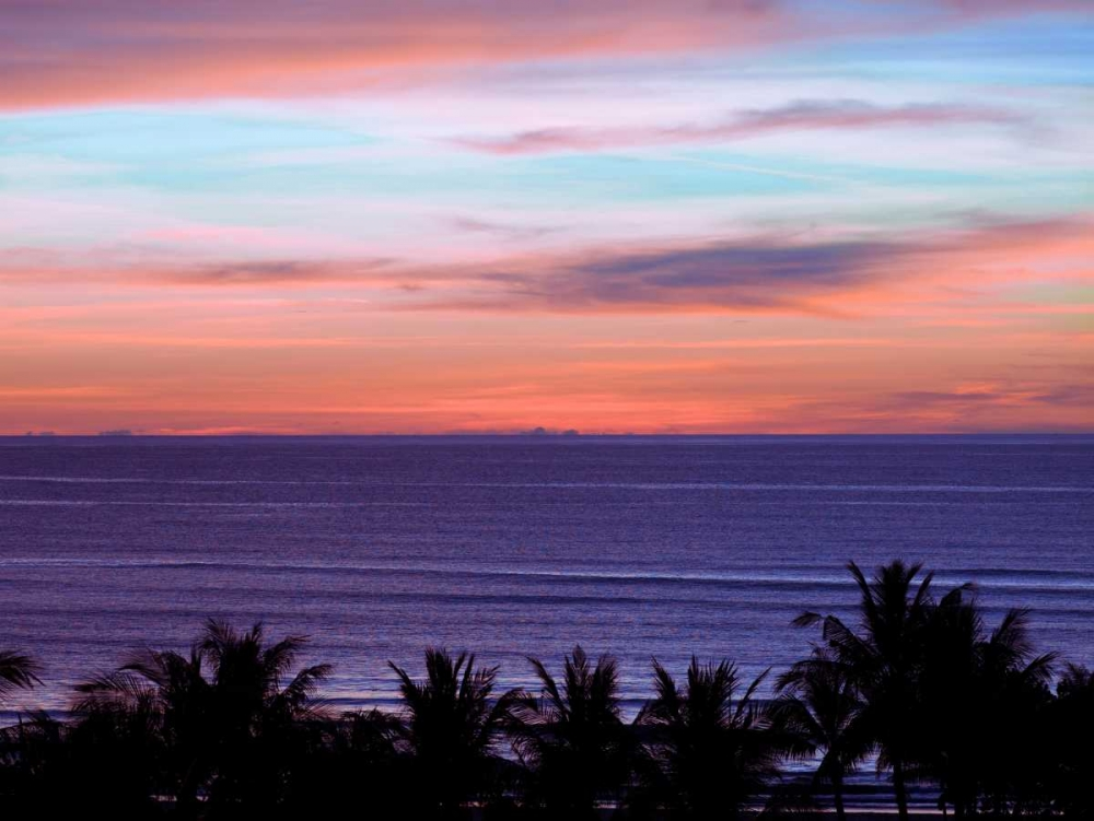 Sea by palm tree at dusk, elevated view Frank, Assaf 103143