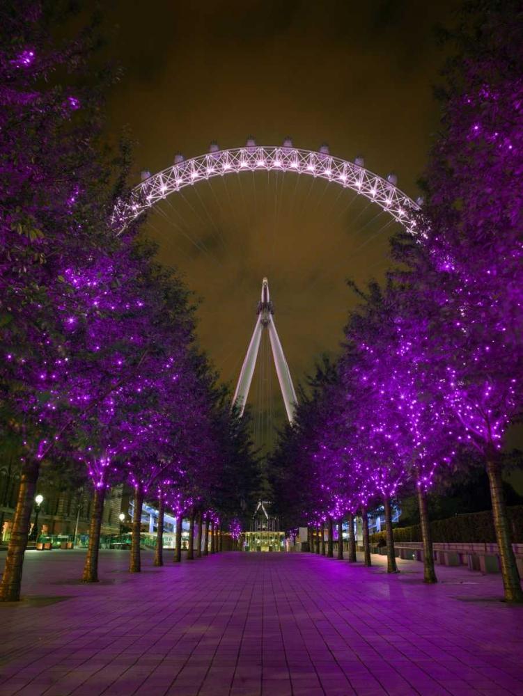 London Eye at night Frank, Assaf 103221