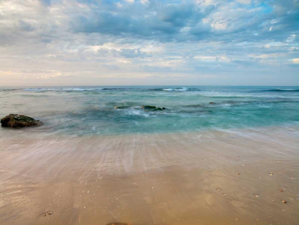 Sandy Beach Frank, Assaf 103231