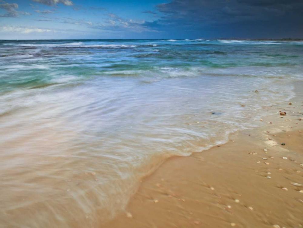 Sandy Beach Frank, Assaf 103232