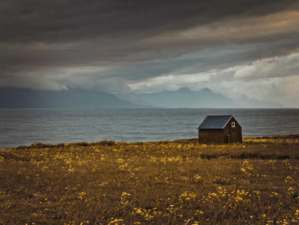 Beach hut on Lofoten coastline, Norway Frank, Assaf 103256