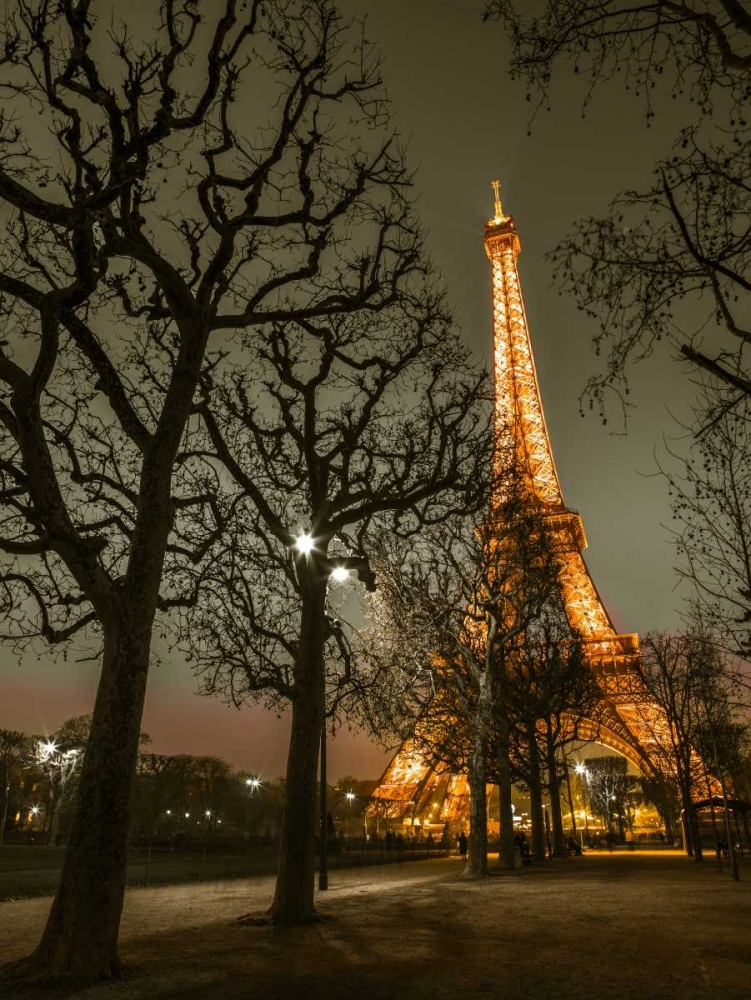 Eiffel tower at night, Paris Frank, Assaf 103335