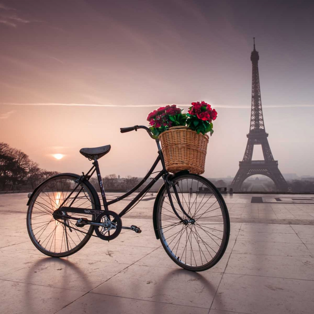 A bicycle with a basket of flowers with the Eiffel tower in the background Frank, Assaf 103342