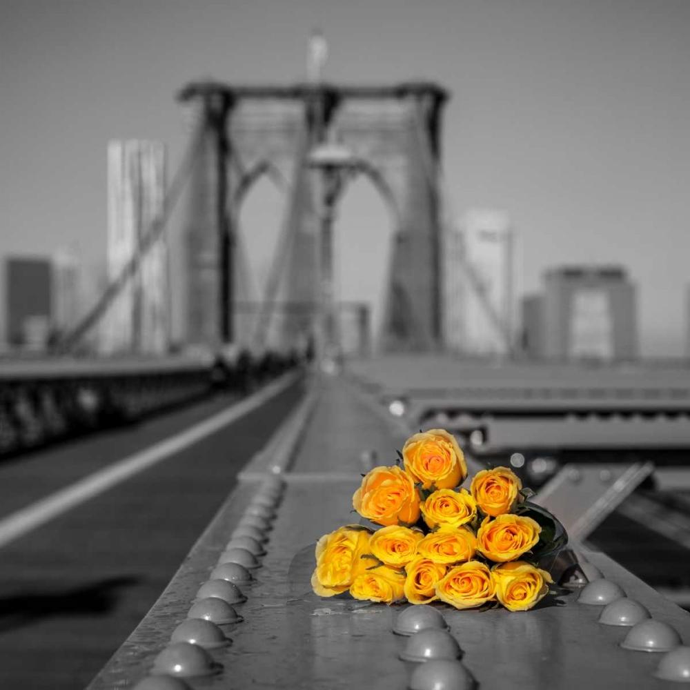 Bunch of roses on Brooklyn Bridge, New York Frank, Assaf 103522