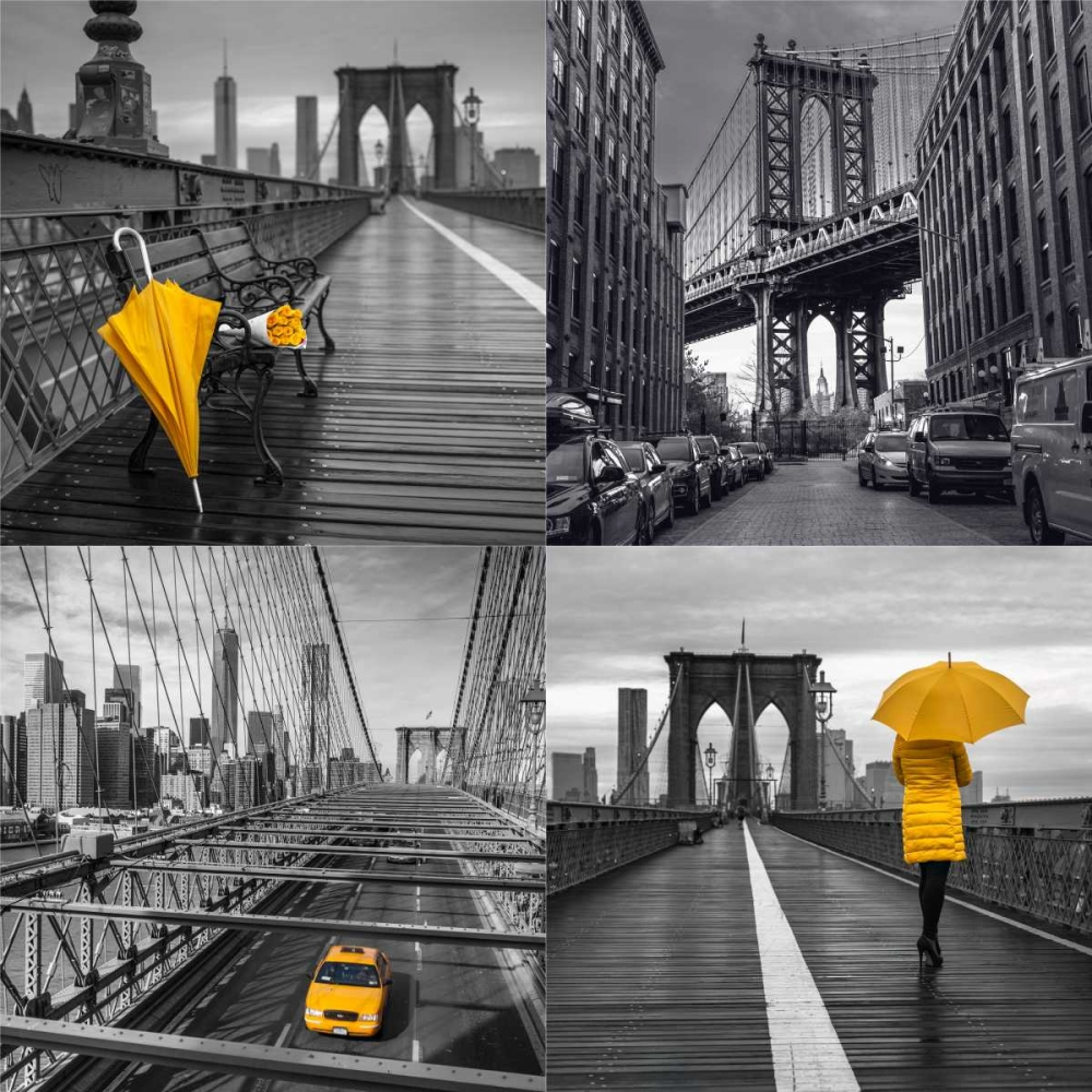 Collage of famous places in New York city Frank, Assaf 103539