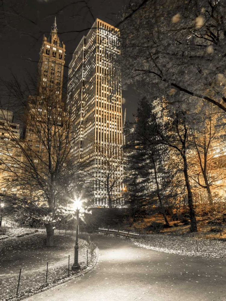 Evening view of Central Park in New York City Frank, Assaf 103578