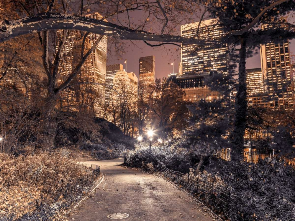 Evening view of Central Park in New York City Frank, Assaf 103581