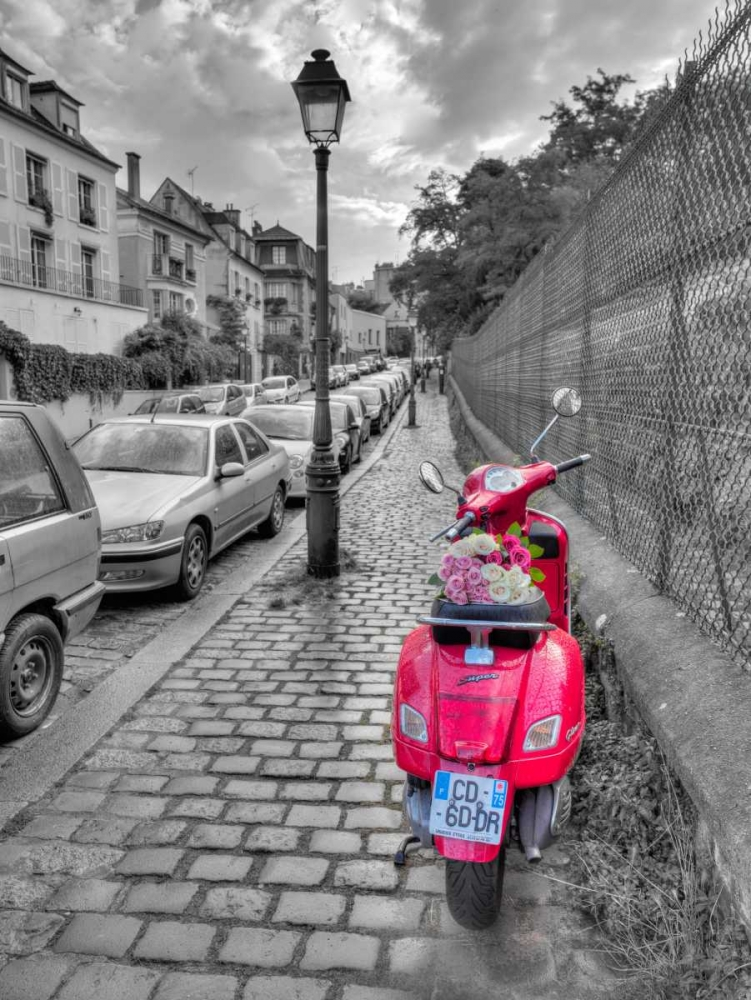 Bunch of Roses on scooter, Paris, France Frank, Assaf 103685