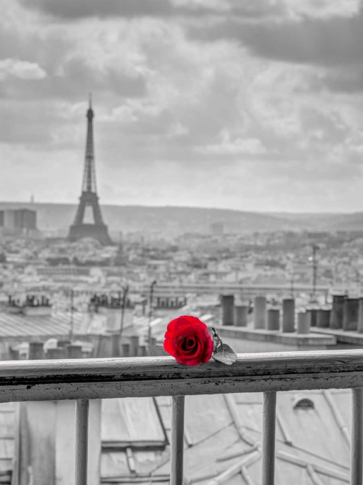 Rose on balcony railing with Eiffel Tower in background, Paris, France Frank, Assaf 103706
