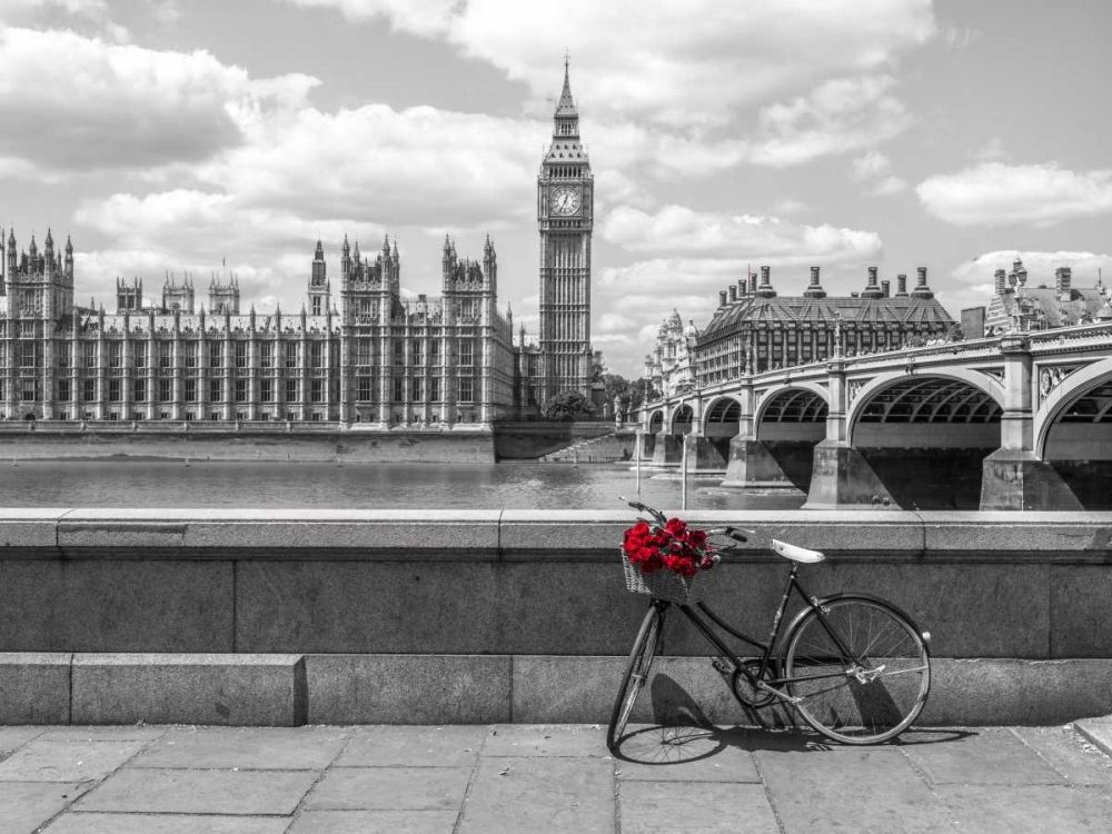 Bunch of Roses on a bicycle agaisnt Westminster Abby, London, UK Frank, Assaf 104014
