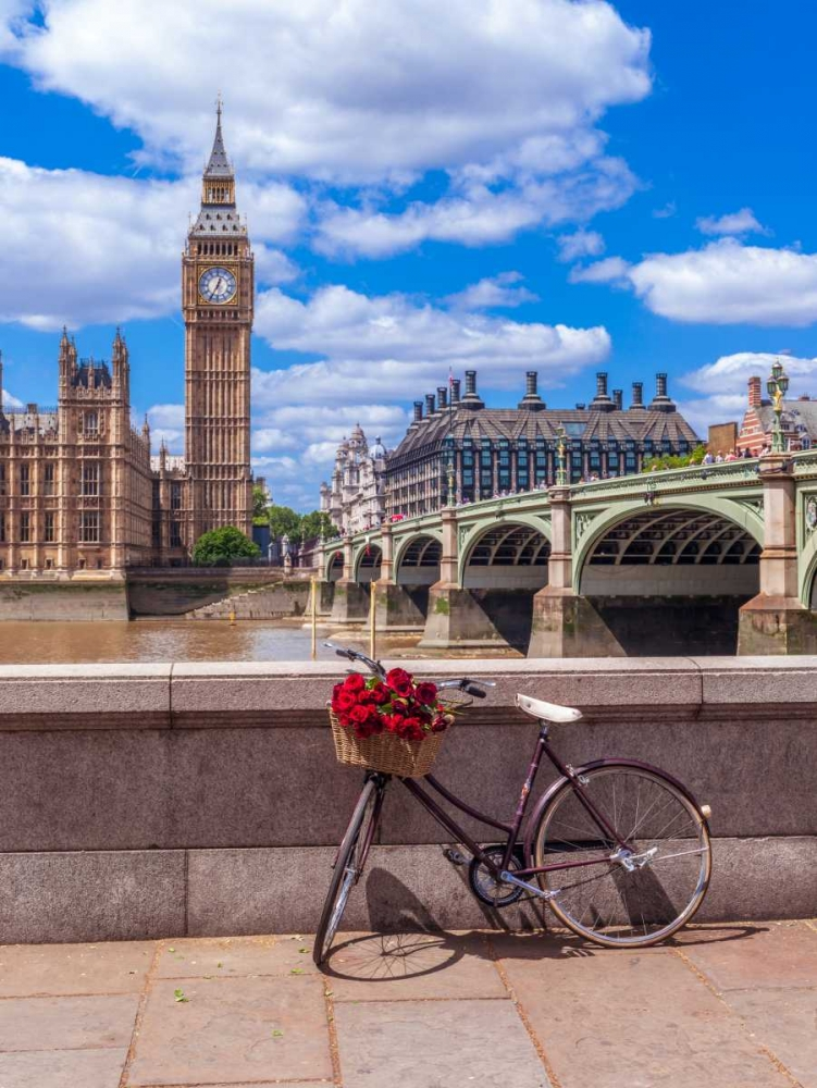 Bunch of Roses on a bicycle agaisnt Westminster Abby, London, UK Frank, Assaf 104015