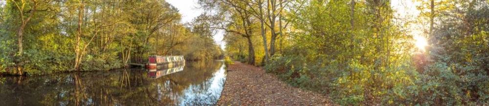 Small canal through forest Frank, Assaf 104131