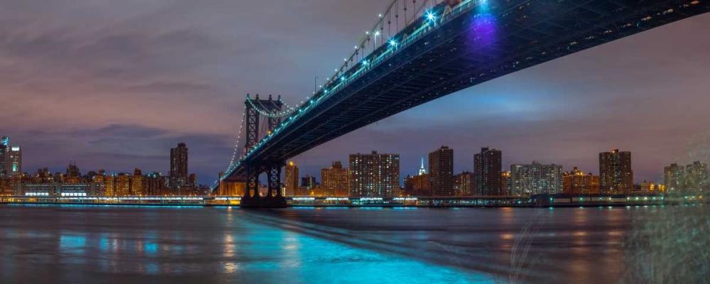 Manhattan bridge and New York city skyline Frank, Assaf 104200
