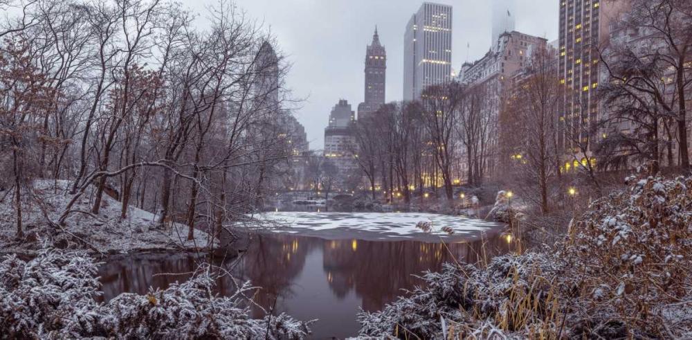 Central park with Manhattan skyline, New York Frank, Assaf 104232