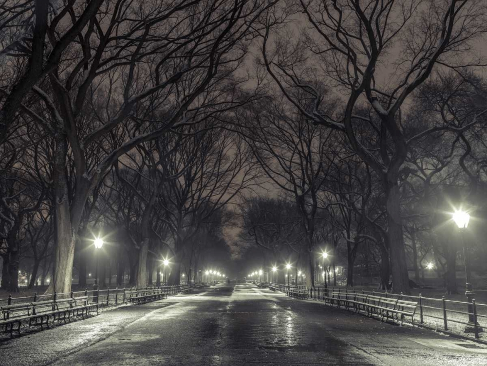 Central park with Manhattan skyline, New York Frank, Assaf 104236