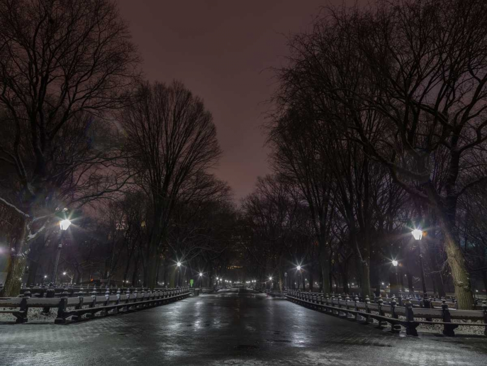 Central park at night, New York Frank, Assaf 104237
