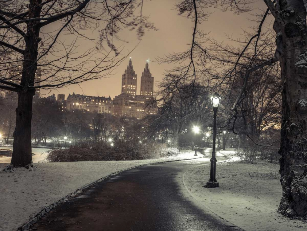 Path in cental park at night, winter, snow, New York. Frank, Assaf 158641