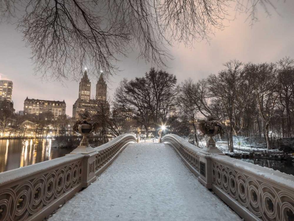 Central park Bow Bridge with Manhattan skyline, New York Frank, Assaf 158645