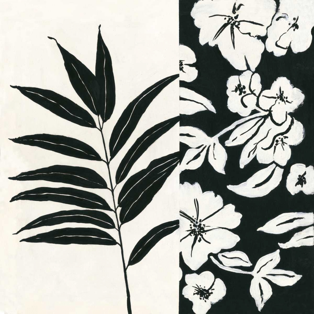 Black and White IV Marrott, Stephanie 71263