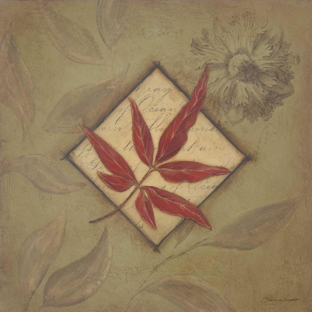 Red Leaf Marrott, Stephanie 71496