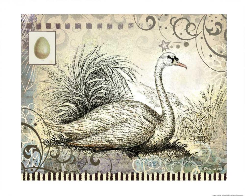 Swan Eisner, Viv 137457