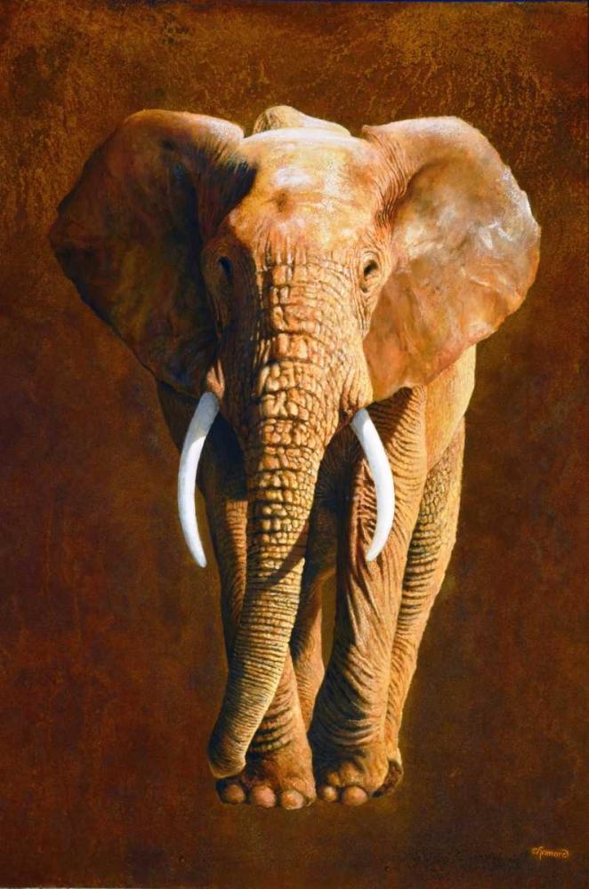 Elephant 04 Chamard, Jean-Marc 163368