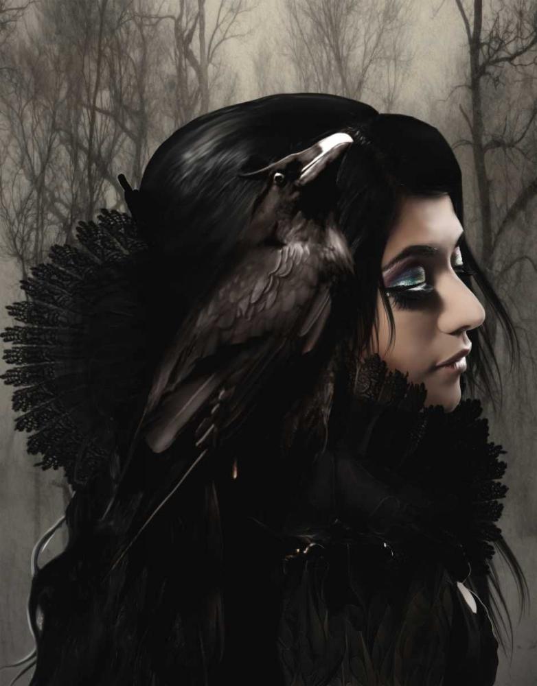 Wisdom black Babette 163434