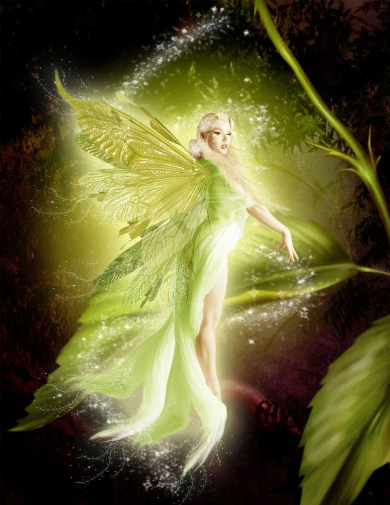 Fairy 5 Babette 163451