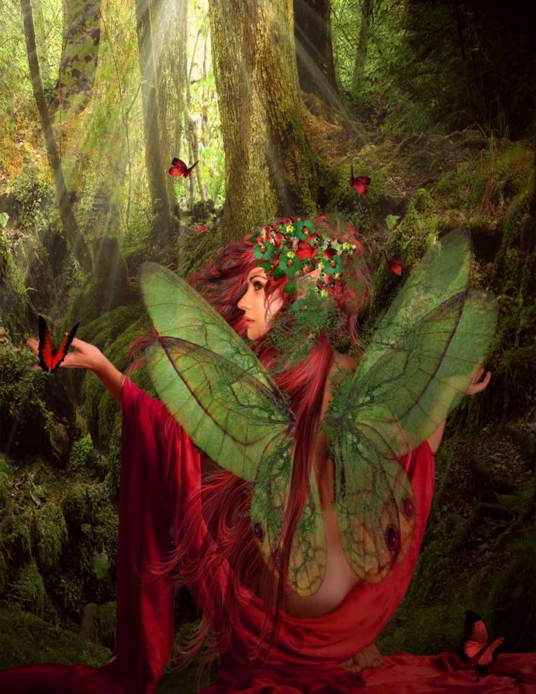 Fairy 43 Babette 163458