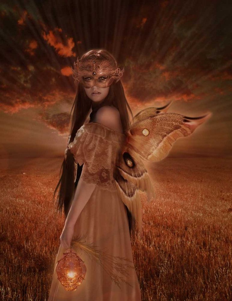 Fairy 35 Babette 163459