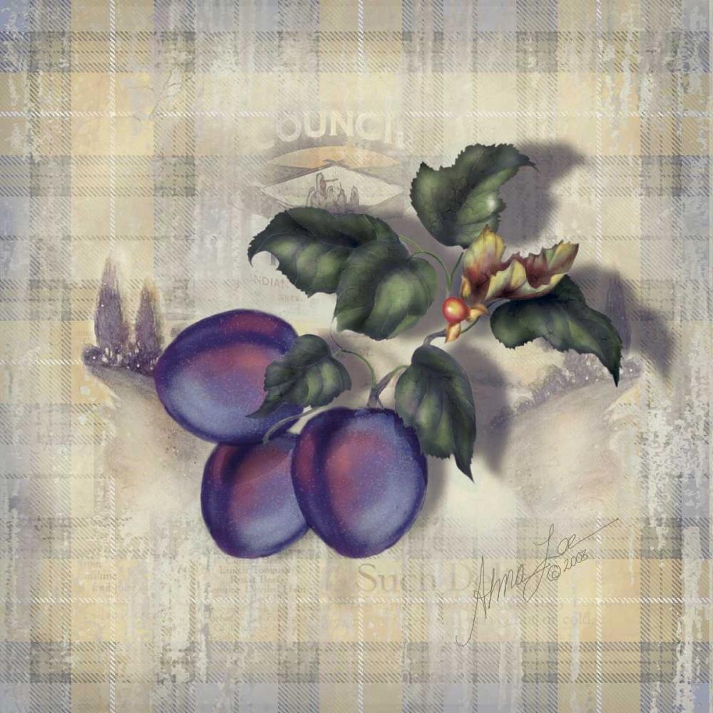 Tartan Fruit-Plum Lee, Alma 94443