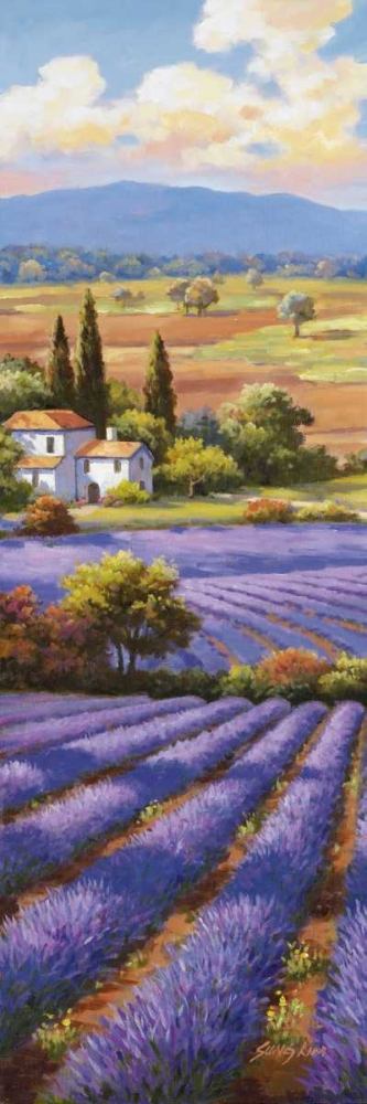 Fields Of Lavender II Kim, Sung 94757