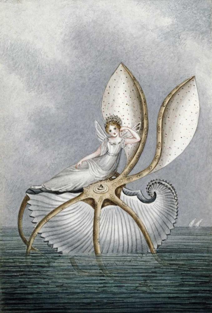 A Fairy Resting On a Shell Murray, Amelia Jane 89099