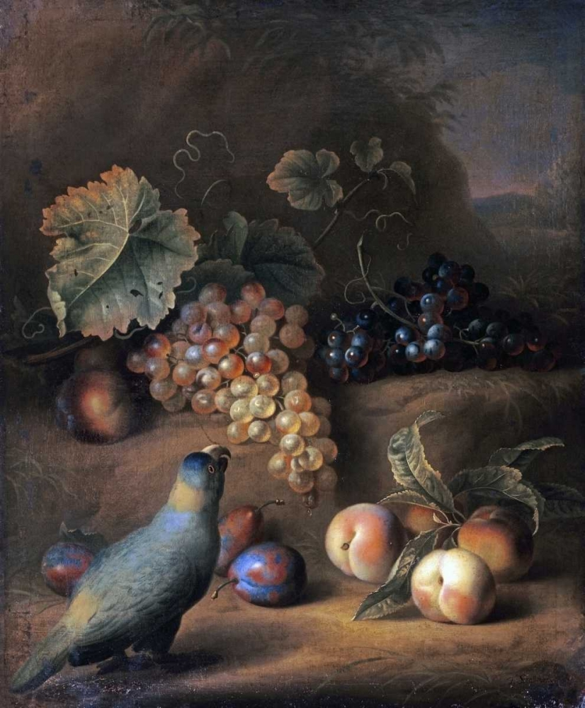 A Parrot With Grapes, Peaches and Plums In a Landscape Stranover, Tobias 89233