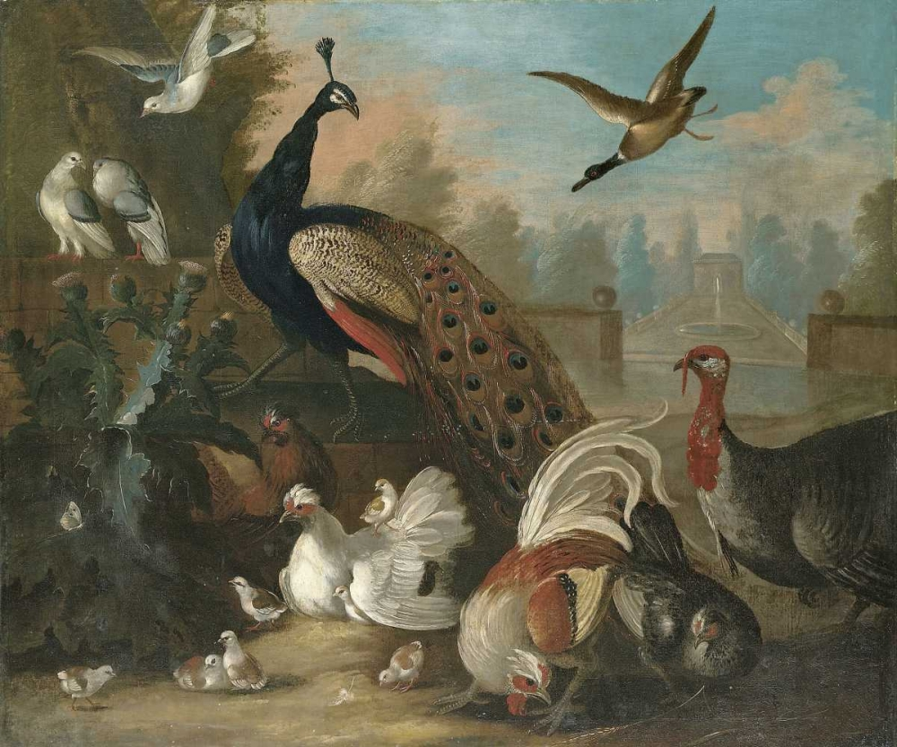 A Peacock and Other Birds Craddock, Marmaduke 89472